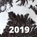 Aprendizajes 2019: ideas y tweets